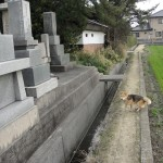 「お墓参り」とか神社に「参る」って何って言うの?